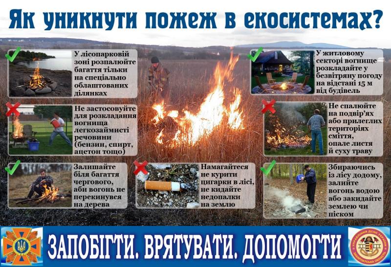 pozhezhi_v_ekosystemah