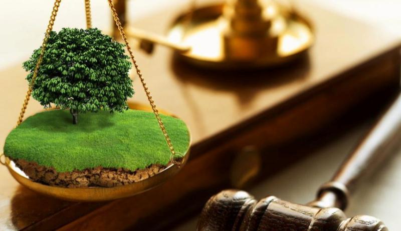Мукачівська місцева прокуратура через суд вимагає збільшити розмір орендної  плати за землю 4fbdbe5bf1ba5