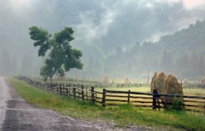 Закарпаття очікує погіршення погоди – інтенсивні дощі та шквалистий вітер