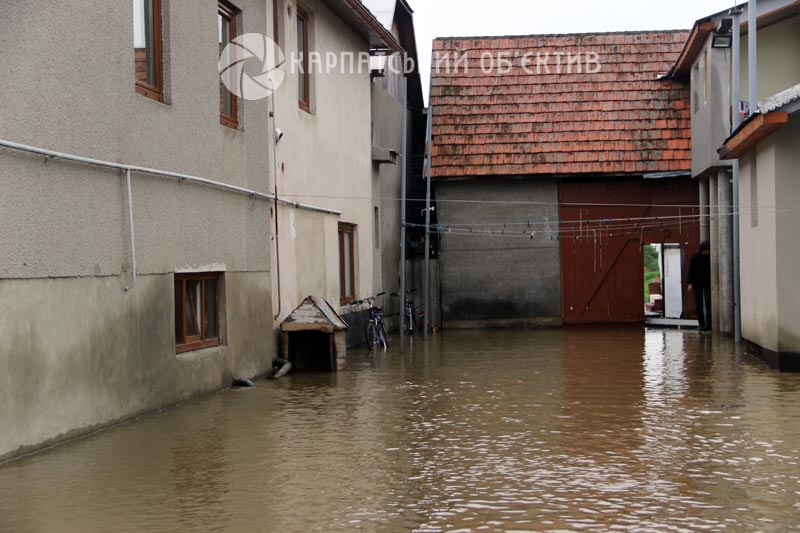 Шокуюча повінь на Закарпатті: рівень води у річках досяг історичного максимуму. Фото, Відео
