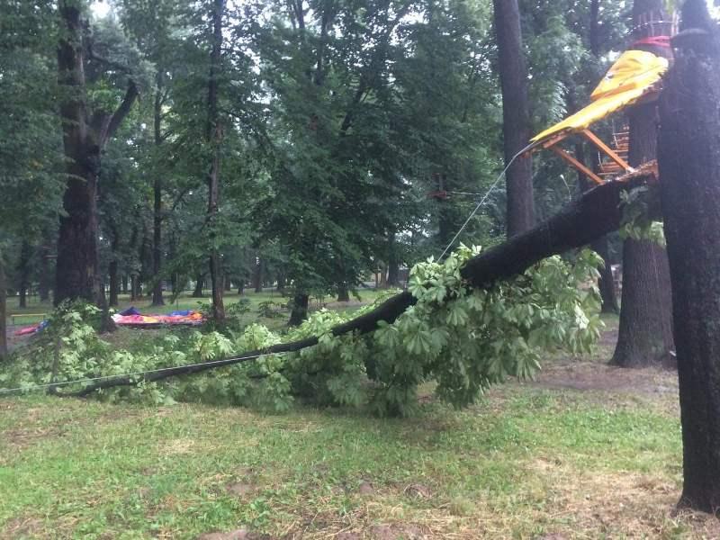 Негода накоїла лиха в ужгородському парку Підзамковий. Фото